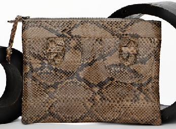 The Bag to Have: Kingsley Python Clutch