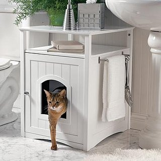 Sugar Shout Out: Kitty Washroom - Love it or Hate it?