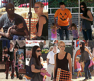 Celebrity Pumpkin Patch Fun!