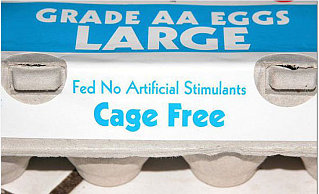 Label Able: Hormone Free Eggs