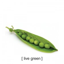 a393iwell_tshirts_live_green