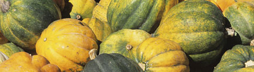 Acorn Squash: Five Low Cal Ways