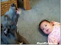 Cute Alert: Baby and Puppy Duet