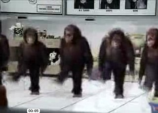 Monkeys + Riverdance = Awesome