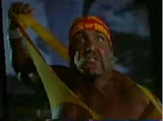 Flashback: Hogan Knows Best