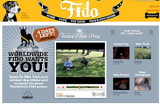 Website of the Day: Worldwide Fido