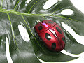 The Metallic Red USB Ladybug Mouse