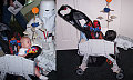 Totally Geeky or Geek Chic? Star Wars Baby Stroller