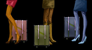 Luggage For Style Conscious Pocket Lovers