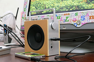 Compact Wood Radio/Speaker: Love It or Leave It?