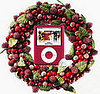 Comment to Win a (PRODUCT) Red iPod Nano