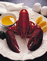 Get Cracking! It's National Lobster Day!