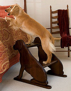 Pampered Pals: Lab Step Stool