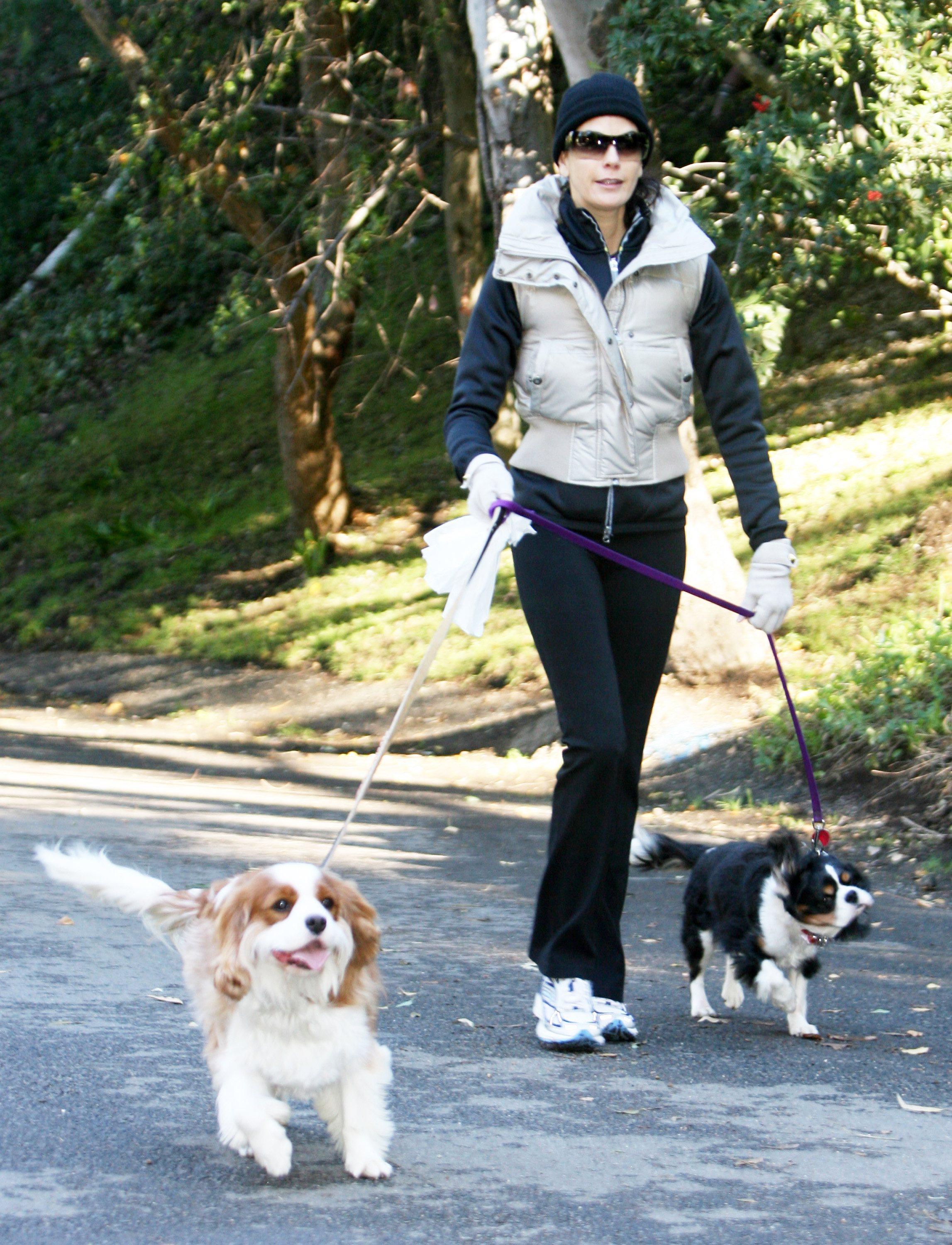teri hatcher dog walk 2 091207