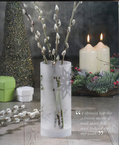 Frosted Snowflake Vase