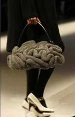 What do you think about the brain bag?