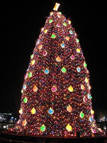 National Christmas Tree in Washington, DC - Love it or Hate it?
