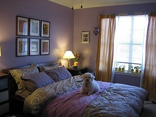 Su Casa: Purple Post-College Bedroom