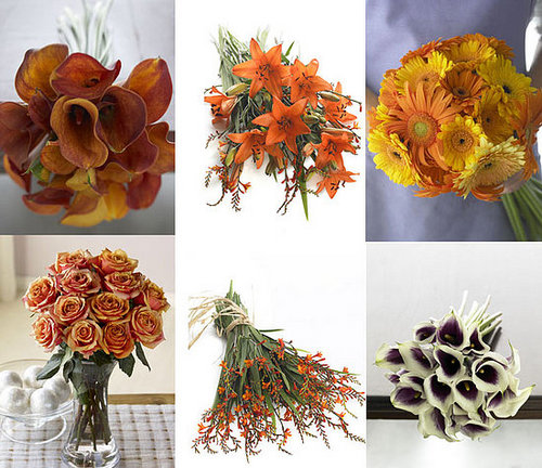 Giveaway! Win Flowers from Organic Bouquet