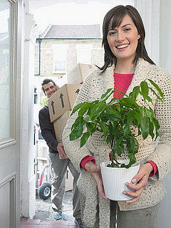 Do You Have Houseplants?