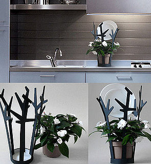 Cool Idea:  Plant-Watering Dishrack