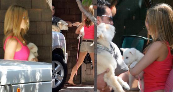 Jennifer Aniston Puppy Love