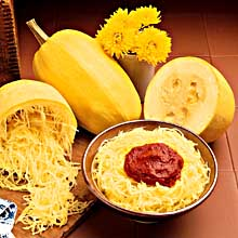 An American Native: Spaghetti Squash